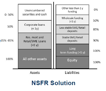 Liquidity Risk1_NSFR