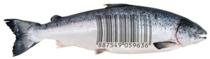 Barcodes_Seafood